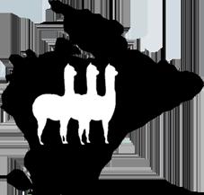 Wild Alpaca Way - Walking with alpacas in Inishowen County Donegal